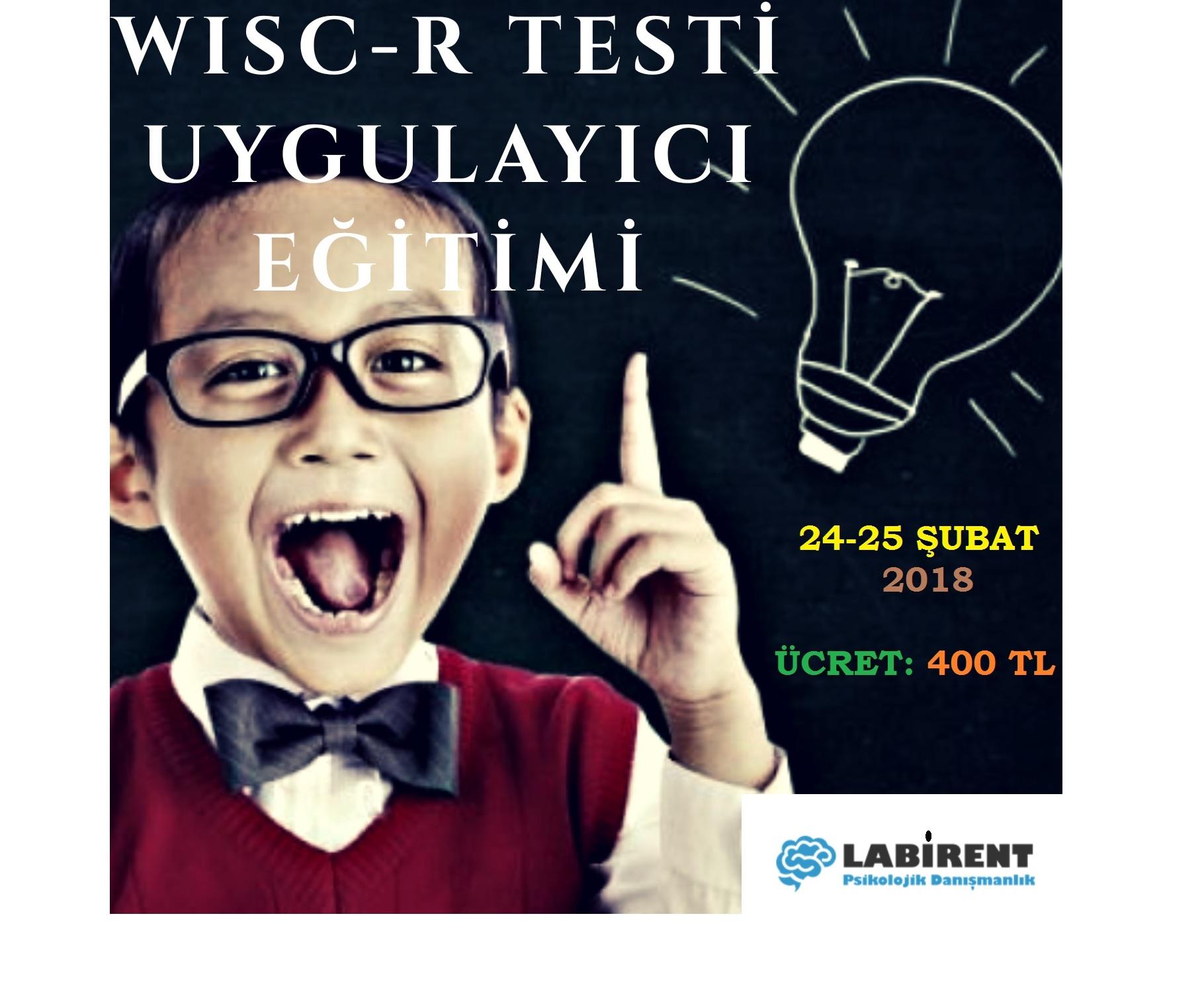 WISC-R WECHSLER TESTİ UYGULAYICI EĞİTİMİ 24-25 ŞUBAT'TA LABİRENT PSİKOLOJİDE