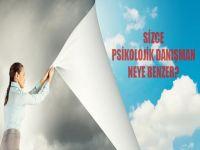 Sizce Psikolojik Danışman Neye Benzer?