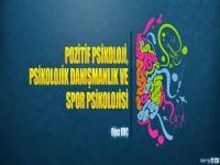 Pozitif Psikoloji, Psikolojik Danışmanlık ve Spor Psikolojisi