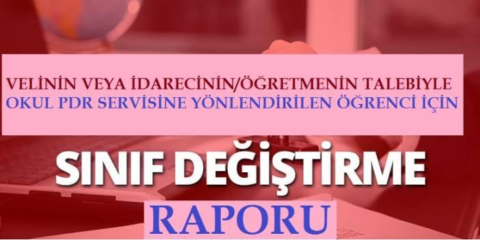 SINIF DEĞİŞİKLİĞİYLE İLGİLİ GÖRÜŞ BİLDİRME RAPORU