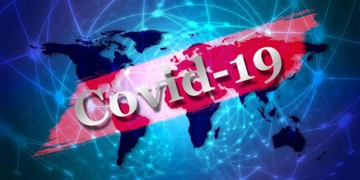 CORONAVİRÜS (COVİD-19) HAKKINDA SUNUM-BROŞÜR-AFİŞ